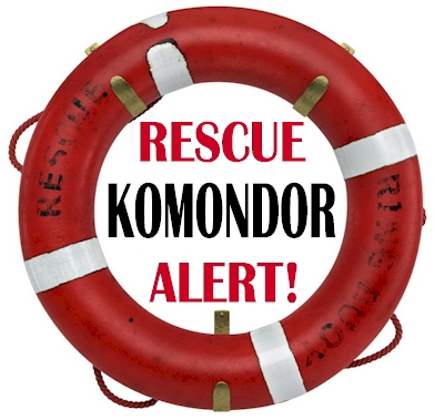 Komondor Rescue Alert